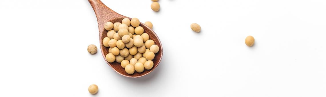 Soja – skarbnica cennych składników!